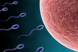 Vô sinh do tinh trùng yếu và ít